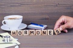 hormone Hölzerne Buchstaben auf dunklem Hintergrund Lizenzfreie Stockfotografie