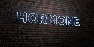 HORMONE -Realistic Neon Sign on Brick Wall background - 3D rendered royalty free stock image. Can be used for online banner ads and direct mailers Stock Photography