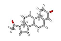 hormonprogesterone könsbestämmer Royaltyfria Bilder