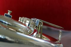 Horn from fanfare. Stock Images