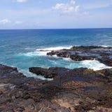 Horn gettante Kauai Fotografia Stock Libera da Diritti