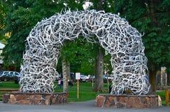Horn på kronhjortbåge i Jackson Hole, Wyoming fotografering för bildbyråer