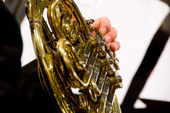 Horn player Royalty Free Stock Photo
