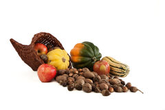 Horn of Plenty. Cornucopia with squash, nuts and apples Royalty Free Stock Image