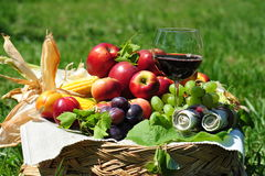 Horn of plenty - rich autumn harvest Royalty Free Stock Image