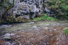 Hornad-Fluss in Slowakei stockbild