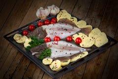 Hornada Tray With Raw Turbot Fish y patatas Foto de archivo libre de regalías
