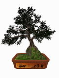 Hornbeam tree bonsai - 3D render stock illustration