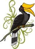 hornbill шаржа Стоковое Изображение RF