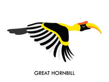 Hornbill african birds 1 Stock Photo