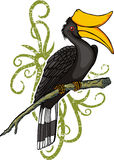 Hornbill cartoon Royalty Free Stock Image