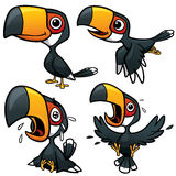 Hornbill Character Stock Photography