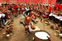 Hornbill Festival of Nagaland-India. stock photos