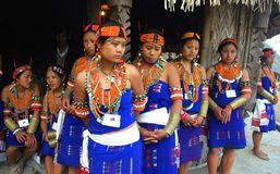 Hornbill festival of Nagaland-India Royalty Free Stock Photo
