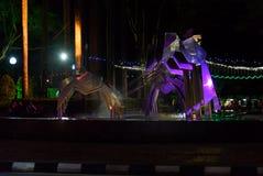 Hornbill Fountain in Kuching at night Royalty Free Stock Photo
