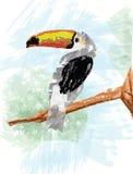 Hornbill Vector.eps Royalty Free Stock Photo