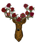 Horned deer with peonies . Royalty Free Stock Image