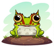 Horned frog cartoon Royalty Free Stock Images