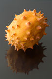 Horned Melon Stock Image