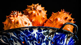 horned melon Royaltyfria Bilder