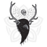 Horned Raven Head. Horned Head of Raven Bird with Spider Web and Skull Royalty Free Stock Photography