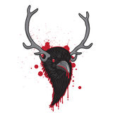Horned Raven Head. Bloody Horned Head of Raven Bird Royalty Free Stock Photo