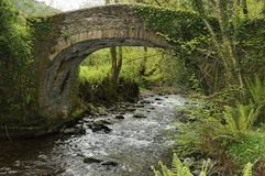 Horner Packhorse Bridge Royalty Free Stock Photo