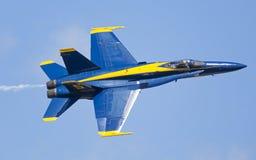 Φ 18 Hornet Στοκ Εικόνα