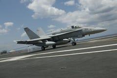 Hornet landing royalty free stock image