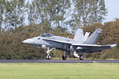 Hornisse Luftwaffen-Boeing-F/A-18 stockbild