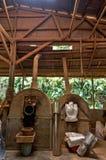Horno para los cacahuetes Imagen de archivo