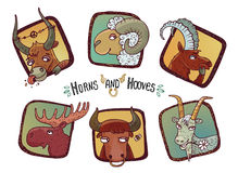 Horns and hooves Stock Images