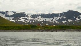 Hornstrandir Στοκ φωτογραφίες με δικαίωμα ελεύθερης χρήσης