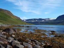 Hornstrandir nature reserve, Iceland. The Hornstrandir nature reserve is situated on the northenmost peninsula of Iceland Royalty Free Stock Photography