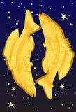 horoskop pisces Royaltyfri Bild