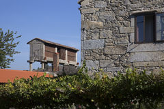 Horreo en traditionell konstruktion som ska hållas, skördade korn i nordliga Spanien Royaltyfri Fotografi