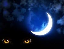 Horreur dans la nuit illustration stock