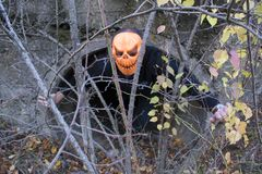 Horrible creature in the autumn forest in the evening. Happy Halloween. Pumpkinhead. A man with a pumpkin on his head climbs out of the pipe stock photo