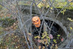 Horrible creature in the autumn forest in the evening. Happy Halloween. Pumpkinhead. A man with a pumpkin on his head climbs out of the pipe royalty free stock image
