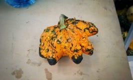 Hallowen punking. An horrible pumbing full of colours Stock Photos