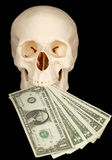 Horrible skull with bundle of money in mouth Stock Photo