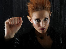 Horrible vampire woman behind rainy window Royalty Free Stock Photography