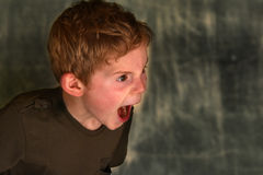 Horrified boy Stock Image