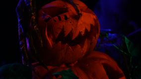 Horrifying monster hand with long fingers strokes a pumpkin, close up stock footage