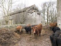 Horrocksford Hall Barn, Clitheroe Imagem de Stock