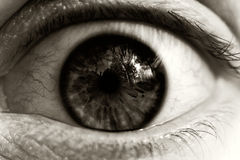 Horror. Image of an eye expressing fear, horror. Processed for high contrast to heighten mood Stock Photography