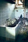 Horror bathtub Royalty Free Stock Image