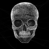 Horror Cobweb Skull Stock Image