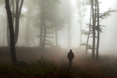 Horror dark man in black foggy forest Stock Image