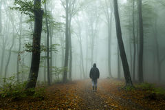 Horror dark man in silhouette in spooky foggy forest Royalty Free Stock Photography